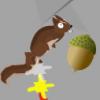 Go Squirrel Go!!!
